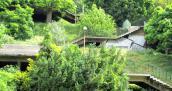 O wyższości Zielonej Góry nad Gorzowem …