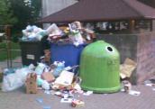 Nasz śmietnik przy Gwiaździstej