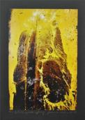 Niezwykłe obrazy i zdjęcia na wystawie w galerii AJP