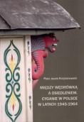 Wkład badacza z Gorzowa do polskiej nauki o społeczeństwie