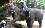 Tajlandia pełna turystów, także z Polski