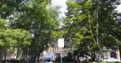 Miasto szykuje kolejne rewitalizacje zieleni