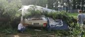 Drzewo przygniotło przyczepę campingową z chłopcem w środku