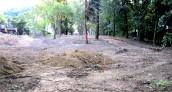 Ścieżka spacerowo-rowerowa przy Kłodawce