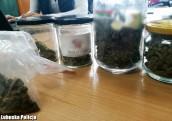 Marihuana schowana w słoikach po miodzie