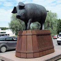 Tartu-11.JPG
