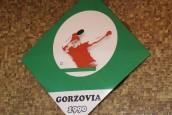 Pingpongiści Gorzovii w czołówce krajowej