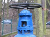 Na Kwiatowej i w sąsiedztwie awaria wodociągu