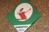 Jest nowy prezes Gorzovii