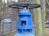 Awaria wodociągu na Dowgielewiczowej