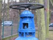 Prace inwestycyjne na sieci wodociągowej