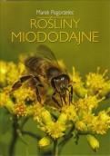 To co pszczoły lubią najbardziej