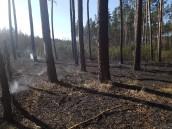 Zagrożenie pożarowekażdego dnia większe