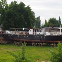 wokologorzowa-4.JPG