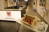Jabłkowe piątki w gorzowskim magistracie