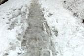 Pomyślmy o najstarszych, usuwajmy śnieg i lód