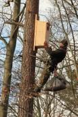 Skrzynki lęgowe dla ptaków i nietoperzy