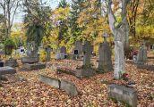Sprzątanie Cmentarza Świętokrzyskiego